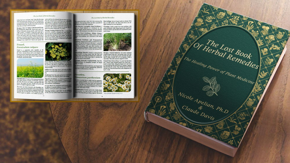 The Search for The Lost Book of Natural Remedies